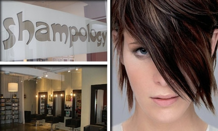 Shampology Salon and Supply - Little Haiti: $29 for $65 Worth of Hair Services at Shampology, Plus 20% Off In-Store Products