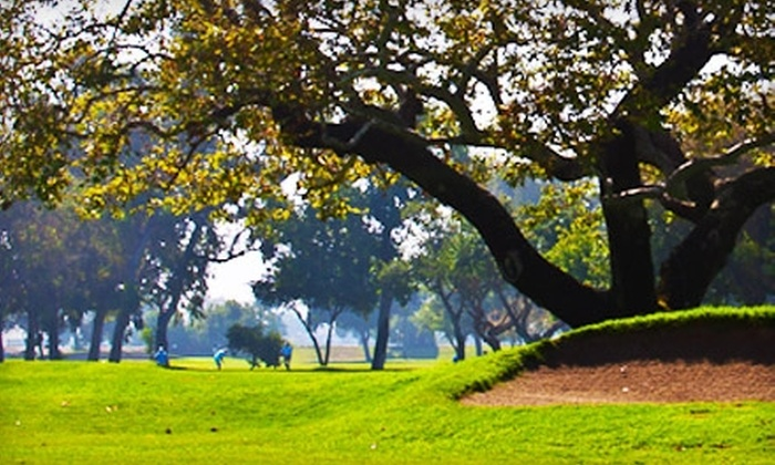 Willowick Municipal Golf Course - Santa Anita Park: $49 for an 18-Hole Round with Cart Rental for Two at Willowick Municipal Golf Course in Santa Ana (Up to $98 Value)