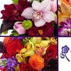 Cactus Flower Florists - Multiple Locations: $25 for $50 Worth of Beautiful Flower Arrangements from Cactus Flower Florists