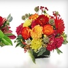 Jane's Roses Floral Design - Mission Bay,South Of Market: $30 Toward Floral Bouquets and Gift Baskets