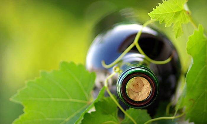 Lou's Florist & Wine Garden - St. Pete Beach: Wine Tasting for Two or Four or Flowers at Lou's Florist & Wine Garden in St. Pete Beach