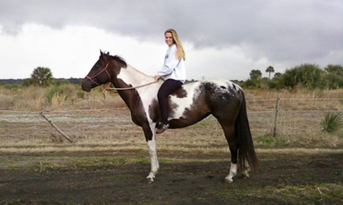 Hidden Acres Equestrian Center - Delespine On Indian River: Horse-Riding Camps and Lessons at Hidden Acres Equestrian Center in Cocoa. Three Options Available.