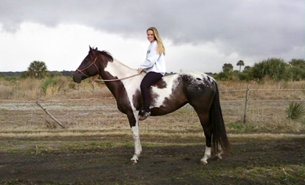 Two-Hour Introductory Group Riding Lesson for Adults or Children (a $50 Value) - Hidden Acres Equestrian Center in Cocoa