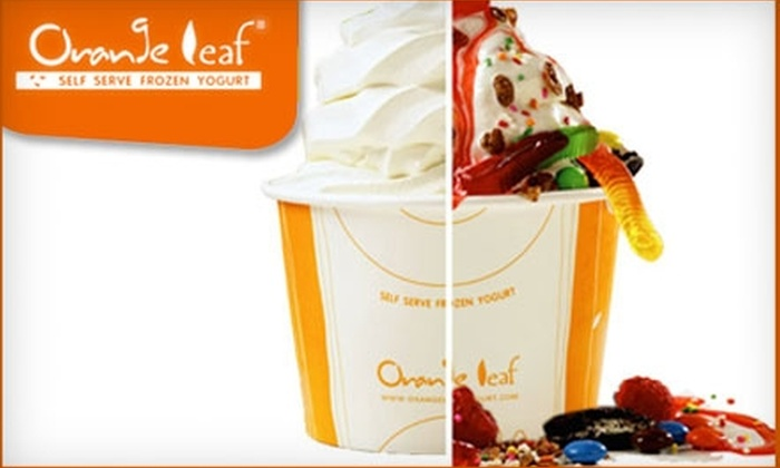 Orange Leaf Frozen Yogurt Houston - Indian Springs: $5 for $10 Worth of Frozen Yogurt at Orange Leaf Frozen Yogurt in The Woodlands