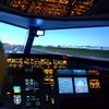 Flight Simulator Experience