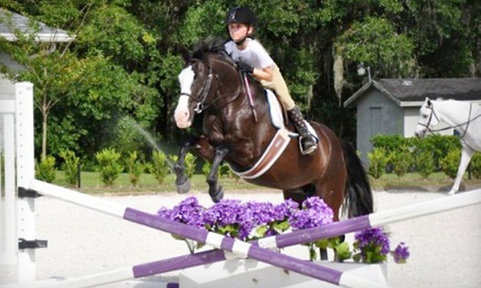 WestWood Farms LLC - Orlando: One or Three One-Hour Horse-Riding Lessons at WestWood Farms LLC (Up to 64% Off)