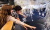 The Leonardo - Central City: The Leonardo Museum Outing for Two, Four, or Six (Up to 61% Off)
