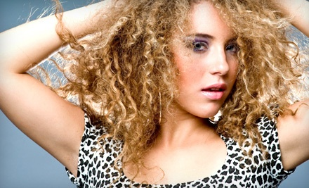 Salon Package with a Haircut, Blow-dry, Style, and Single-Process Color (a $130 value) - Salon New Image in North Miami Beach