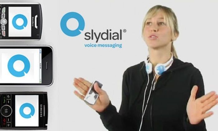 slydial - New York City: Skip the Chat & Go Straight to Voicemail with $15 for a Year of Premium-Level Service from slydial.