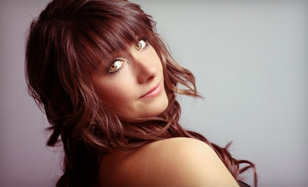 Womens Haircut and Blow-Dry (a $65 value) - Niche Hair Design in Watchung