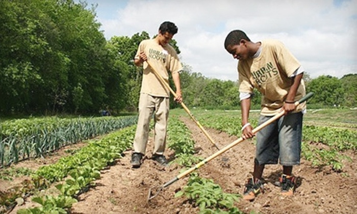 YouthLaunch - Multiple Locations: Donate $10 to Urban Roots and Receive $12 Worth of Fresh Produce, or Donate $343 Toward Enrollment in 17-Week Produce Program