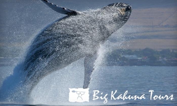 Big Kahuna Tours - Ala Moana - Kakaako: $35 for a Whale-Watching Tour from Big Kahuna Tours ($79 Value)