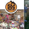 Half Off at The Dog Shop