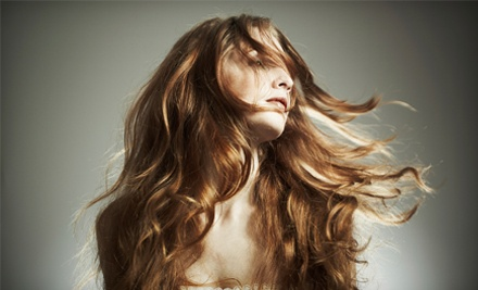 Beaches Hair Studio: Shampoo, Haircut and Blow-Dry - Beaches Hair Studio in Hobe Sound
