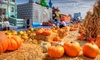 Up to 60% Off All-Day Pass to Pumpkin Patch