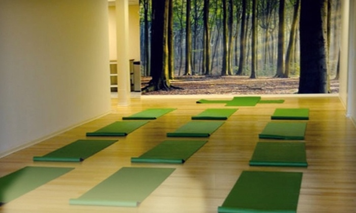 FitLifeStyles/BarrhavenYoga Studio - Sheahan Estates - Trend Village - Arlington Woods: $39 for One Month of Unlimited Yoga Classes at FitLifeStyles/BarrhavenYoga Studio ($135.60 Value)