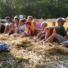 $6 for Corn Maze and Hayride in Gallatin