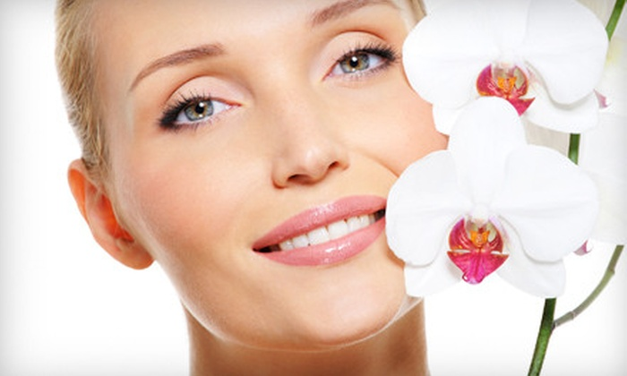 The Inner Circle Spa - Sarasota: Dermaplaning or Microdermabrasion at The Inner Circle Spa in Sarasota (61% Off)