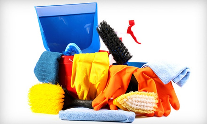 The Lady Brigade Cleaning - Beavercreek: $55 for a Basic House Cleaning from The Lady Brigade Cleaning (Up to $139 Value)