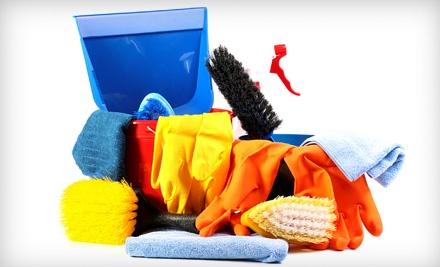 The Lady Brigade Cleaning - The Lady Brigade Cleaning in