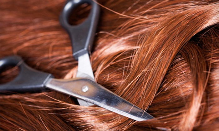 L Spa - Chesterhill: Women's Haircut, Women's Cut and Highlight, or Men's Cut at L Spa in Muskego