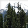 Up to 40% Off Canadian Rockies Tour