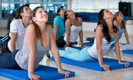 MetaBody Yoga & Fitness Pass - MetaBody Yoga & Fitness Pass in Edmonton