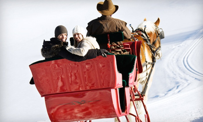 Ma & Pa's - Troy: $75 for a 30-Minute Horse-Drawn Sleigh- or Carriage-Ride Experience for Four from Ma & Pa's in Burton ($150 Value)
