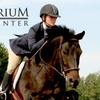 54% Off Horse-Riding Lesson