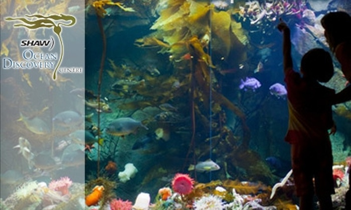 Shaw Ocean Discovery Centre - Sidney: $13 for Two Adult Admission Tickets to Shaw Ocean Discovery Centre in Sidney ($26.88 Value)