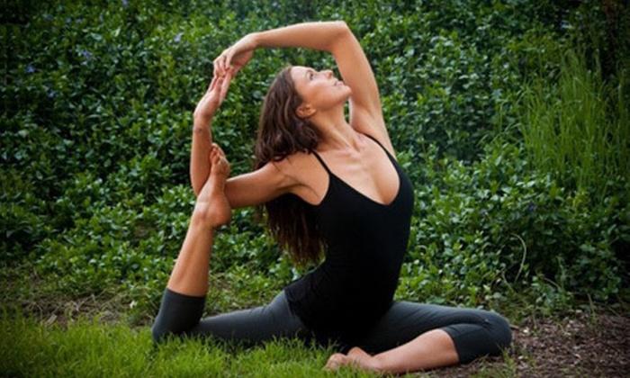 The Yoga Collective - Downtown Santa Monica: $20 for 20 Classes at The Yoga Collective in Santa Monica ($200 Value)