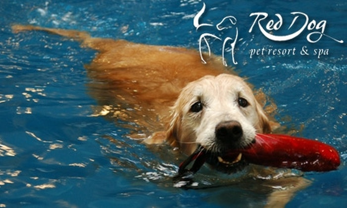 Red Dog Pet Resort & Spa - Madisonville: $36 for One-Year Membership to Dog Park, Dog Pool Access, and Daycare Evaluation at Red Dog Pet Resort & Spa ($144 Value)