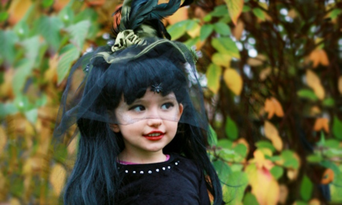 Just Imagine…Fun Clothing Inc. - Multiple Locations: $25 for $50 Worth of Costumes, Dancewear, and Kids' Formal Wear at Just Imagine…Fun Clothing, Inc.