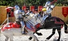 Sarasota Medieval Fair – Half Off Admission