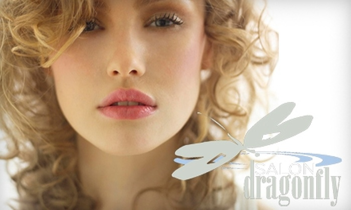 Salon Dragonfly - Downtown Ashville: $50 for $100 Worth of Services at Salon Dragonfly