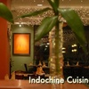 Half Off Fare at Indochine Cuisine in Parker