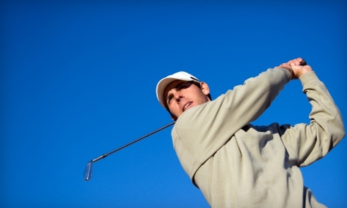 Sweet Swing Golf - Atlanta: $89 for Four Private Golf Lessons With Video Analysis from Sweet Swing Golf ($380 Value)