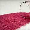 Up to 73% Off from Carpet Green Clean