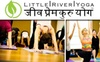 Little River Yoga - Lincolnia: $45 for Eight Yoga Classes at Little River Yoga ($108 Value)