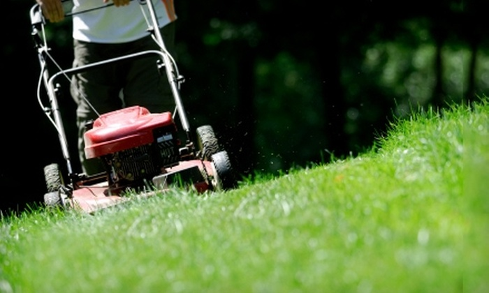 Jc Total LLC - Orange Park: $35 for Two Visits of Lawn Care Service from Jc Total LLC