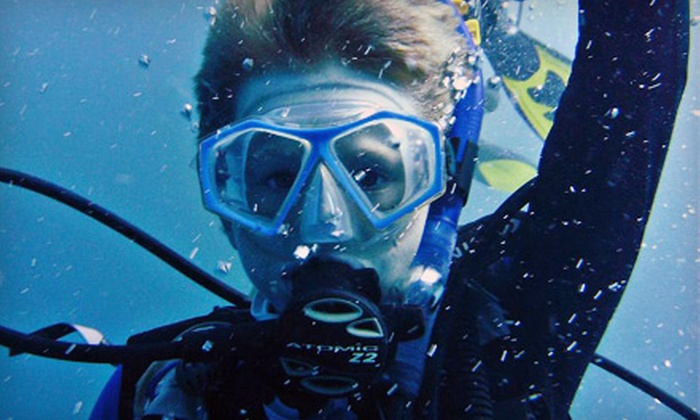 Scuba Outfitters of Naples - East Naples: $199 for a Scuba-Certification Class from Scuba Outfitters of Naples ($449 Value)
