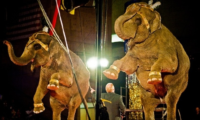 """Tickets to Circus Gatti's """"Pushing the Limits."""" Two Dates Available."""