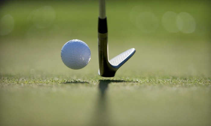 Salt Creek Golf Club - Wood Dale: Golf Outing for Two or Four at Salt Creek Golf Club in Wood Dale