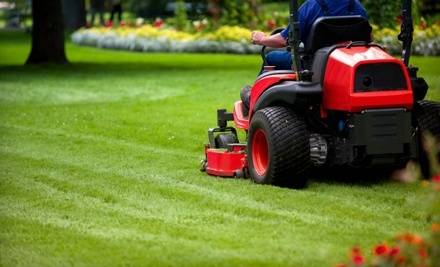 Star Landscape: 1 Lawn-Mowing Service  - Star Landscape in