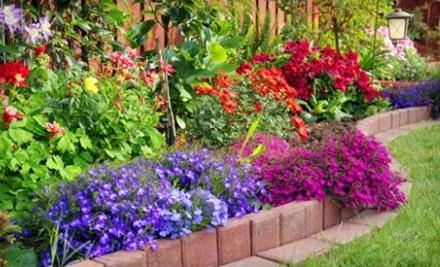 $50 Groupon to Primex Garden Center - Primex Garden Center in Glenside