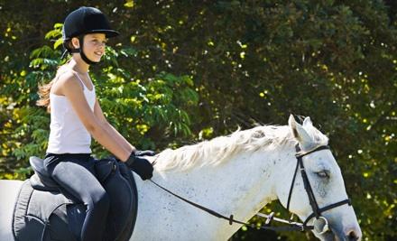 Chiron Equestrian Services: 1 Horseback-Riding Lesson - Chiron Equestrian Services in Saco