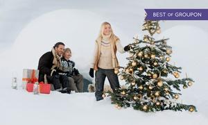Kaisertanne.de: Premium-Nordmanntanne 1A, optional inkl. Weihnachtskugeln und Lichterkette, von Kaisertanne.de (bis zu 25% sparen*)