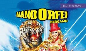 Circo Nando Orfei, 10-19 marzo a Chiari: Circo NandOrfei, dal 10 al 19 marzo a Chiari (sconto fino a 68%)
