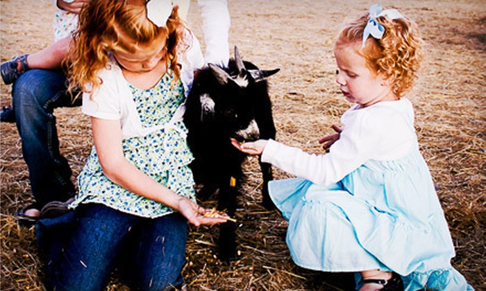 Hee Haw Farms - Scratch Gravel: Spring or Fall Farm Outing for Two or Five at Hee Haw Farms in Pleasant Grove (Up to 55% Off)