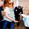 Up to 55% Off Farm Outing in Pleasant Grove